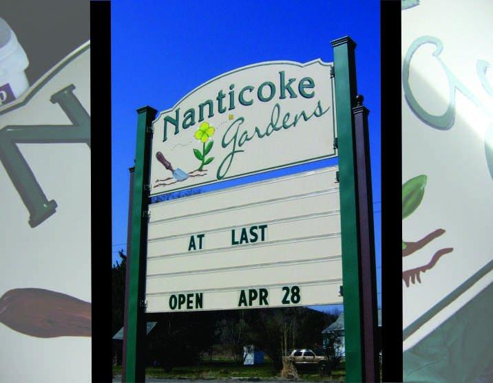 Nanticoke Montage